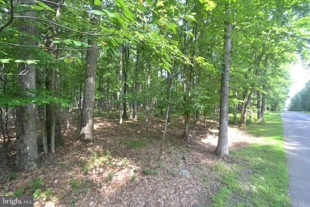 B591/B592 Towamensing Trail, ALBRIGHTSVILLE, PA 18210 (#PACC2000168) :: Colgan Real Estate