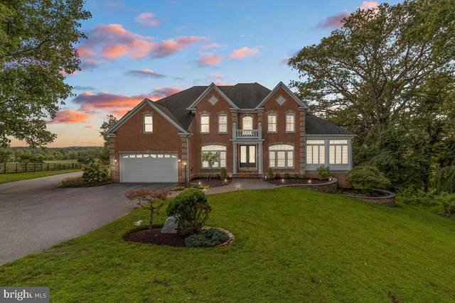 11425 Butterfruit Way, ELLICOTT CITY, MD 21042 (#MDHW2002520) :: BayShore Group of Northrop Realty