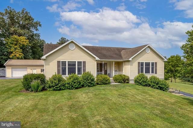 145 Lindsay Lane, EDINBURG, VA 22824 (#VASH2000474) :: Great Falls Great Homes