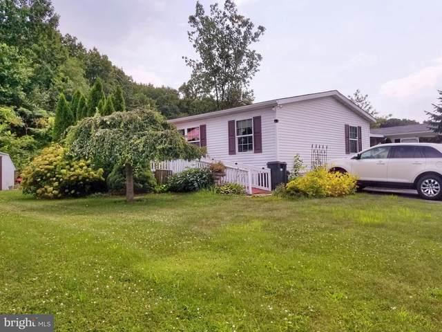 84 Pheasant Drive, KUTZTOWN, PA 19530 (MLS #PABK2002066) :: Kiliszek Real Estate Experts