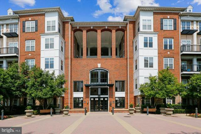 501 Hungerford Drive #239, ROCKVILLE, MD 20850 (#MDMC2007842) :: Charis Realty Group