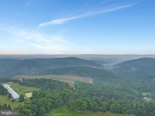 Lot 3 Crest View Sub Lower New Germany Road, FROSTBURG, MD 21532 (#MDGA2000484) :: Jacobs & Co. Real Estate