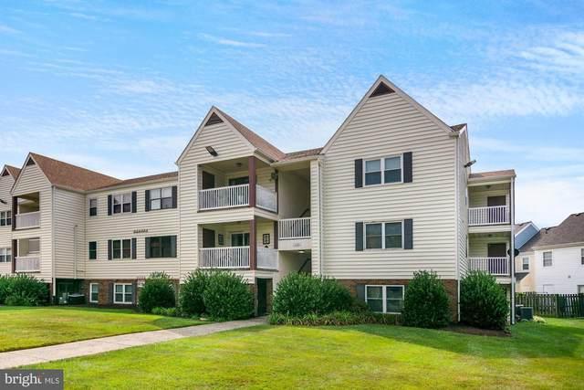100 Chesterfield Lane #207, STAFFORD, VA 22556 (#VAST2001808) :: Jacobs & Co. Real Estate