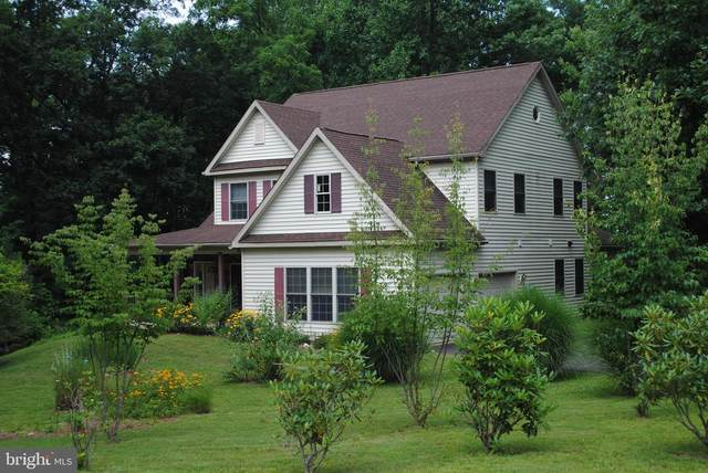 295 Sioux Drive, AUBURN, PA 17922 (#PASK2000702) :: Linda Dale Real Estate Experts