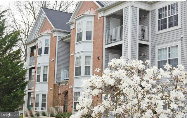 655 Burtons Cove Way #11, ANNAPOLIS, MD 21401 (#MDAA2004954) :: Teal Clise Group