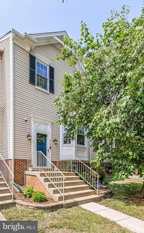6168 Old Brentford Court, ALEXANDRIA, VA 22310 (#VAFX2011146) :: Debbie Dogrul Associates - Long and Foster Real Estate