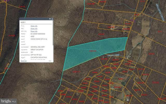 Cold Run Valley Road, BERKELEY SPRINGS, WV 25411 (#WVMO2000258) :: Colgan Real Estate