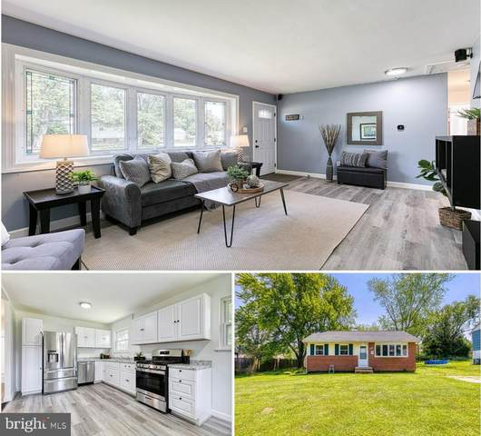 315 Holly Hill Road, REISTERSTOWN, MD 21136 (#MDBC2005436) :: Ultimate Selling Team