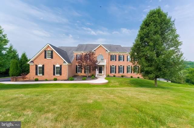 38258 Wildflower Meadow Court, HAMILTON, VA 20158 (#VALO2004534) :: Peter Knapp Realty Group
