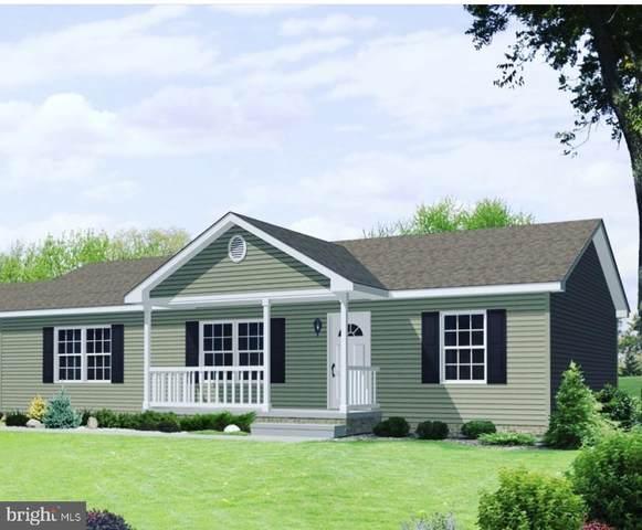 Stagg Trail, WINCHESTER, VA 22602 (#VAFV2000886) :: Dart Homes