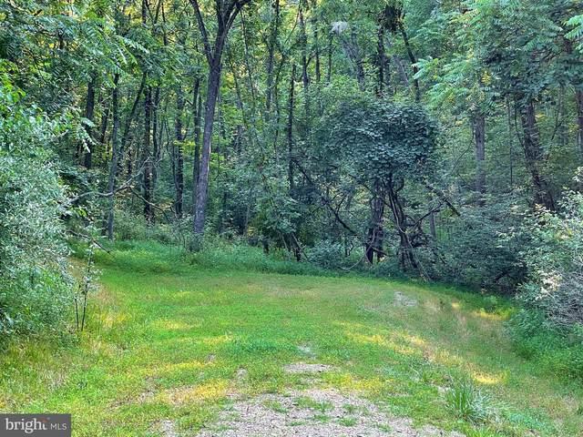 Tupelo, SPRINGFIELD, WV 26763 (#WVHS2000282) :: Dart Homes