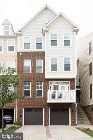 25223 Briargate Terrace, CHANTILLY, VA 20152 (#VALO2004598) :: Bic DeCaro & Associates