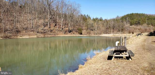Lot 1 Old Mountain Run Trail, PURGITSVILLE, WV 26852 (#WVHS2000290) :: Grace Perez Homes