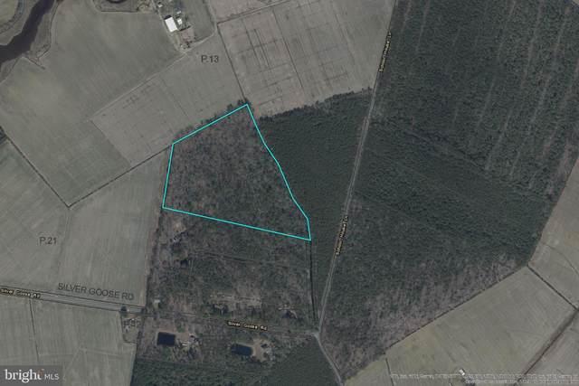 Lot 3 Silver Goose Road, CAMBRIDGE, MD 21613 (#MDDO2000362) :: Colgan Real Estate