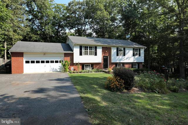 35900 Sycamore Court, MECHANICSVILLE, MD 20659 (#MDSM2001028) :: Great Falls Great Homes
