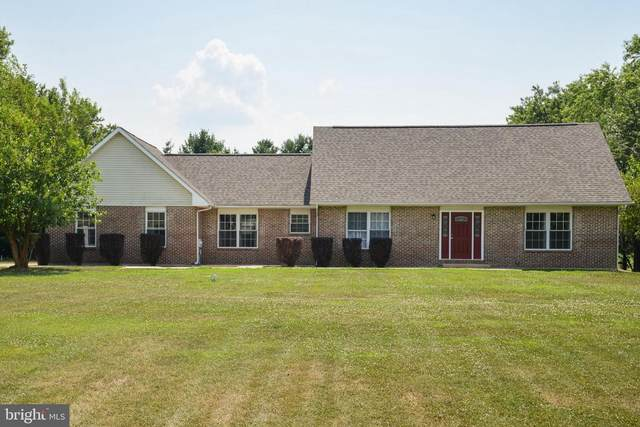 14 Maureen Drive, MIDDLETOWN, DE 19709 (#DENC2003538) :: The Charles Graef Home Selling Team