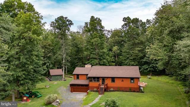 39 Stony Brook Road, HOPEWELL, NJ 08525 (#NJME2002780) :: Linda Dale Real Estate Experts