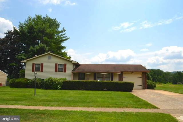 940 W Areba Avenue, HERSHEY, PA 17033 (#PADA2001788) :: The Heather Neidlinger Team With Berkshire Hathaway HomeServices Homesale Realty