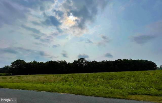 Lot 2 Marvel Road, MARYDEL, MD 21649 (#MDCM2000288) :: The Schiff Home Team