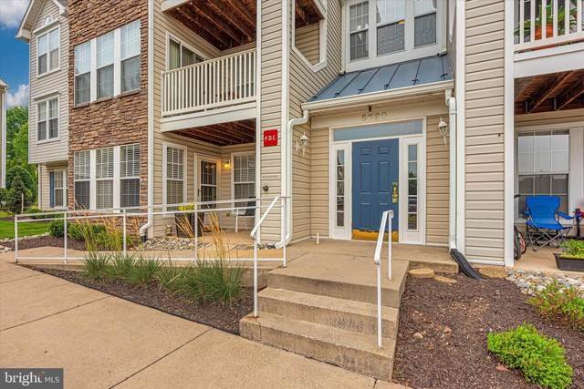5620 Avonshire Place A, FREDERICK, MD 21703 (#MDFR2003218) :: Century 21 Dale Realty Co