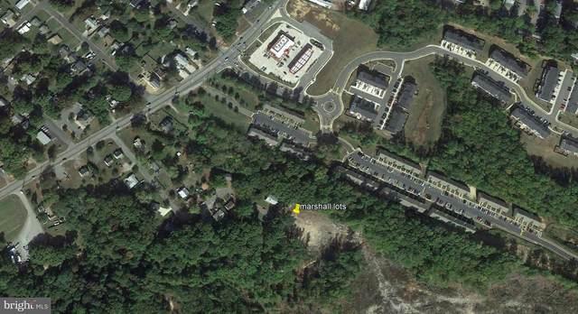 204 Marshall Drive, FREDERICKSBURG, VA 22408 (#VASP2001528) :: The Redux Group