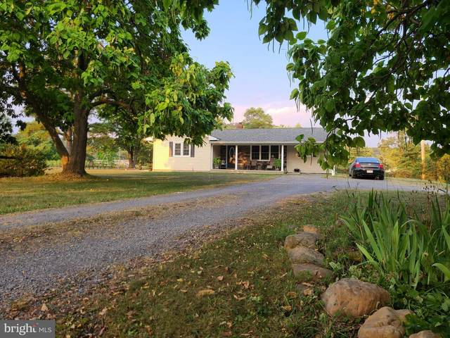 57 Pleasant View Drive, MAYSVILLE, WV 26833 (#WVGT2000036) :: AJ Team Realty