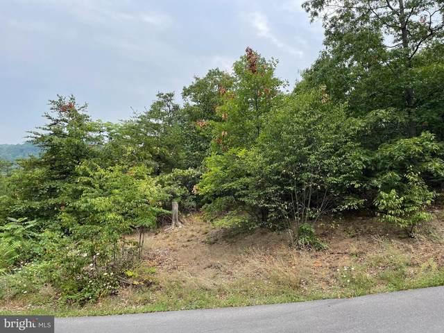Misty Glen Drive, RIDGELEY, WV 26753 (#WVMI2000136) :: Great Falls Great Homes