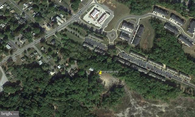 205 Marshall Drive, FREDERICKSBURG, VA 22408 (#VASP2001534) :: The Redux Group