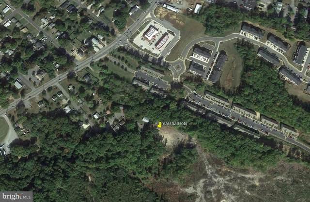 207 Marshall Drive, FREDERICKSBURG, VA 22408 (#VASP2001536) :: EXIT Realty Enterprises
