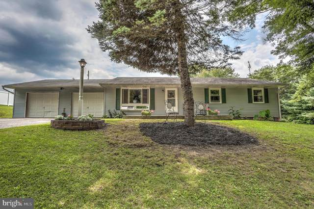 150 Silver Mine Road, CONESTOGA, PA 17516 (#PALA2002876) :: The Craig Hartranft Team, Berkshire Hathaway Homesale Realty