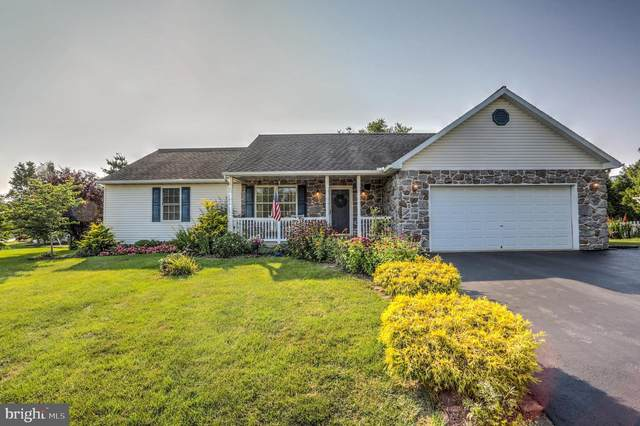 164 Shalom Drive, DENVER, PA 17517 (#PALA2002878) :: The Heather Neidlinger Team With Berkshire Hathaway HomeServices Homesale Realty