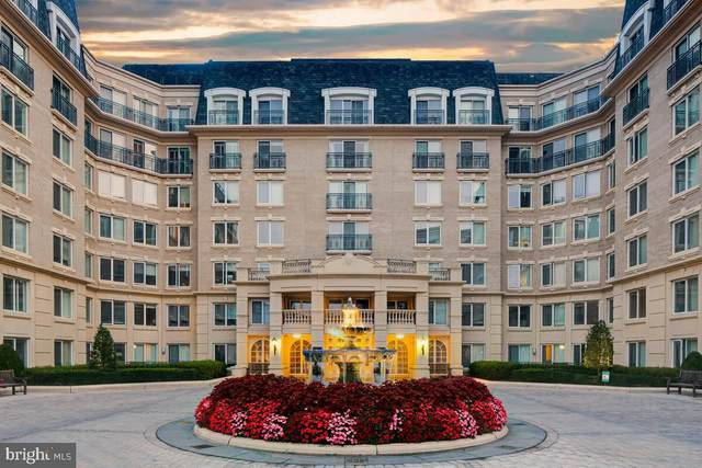 5 Park Place #603, ANNAPOLIS, MD 21401 (#MDAA2005388) :: City Smart Living