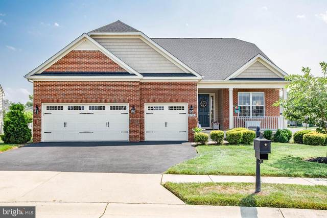 9710 Balls Bluff Drive, FREDERICKSBURG, VA 22407 (#VASP2001552) :: Dart Homes