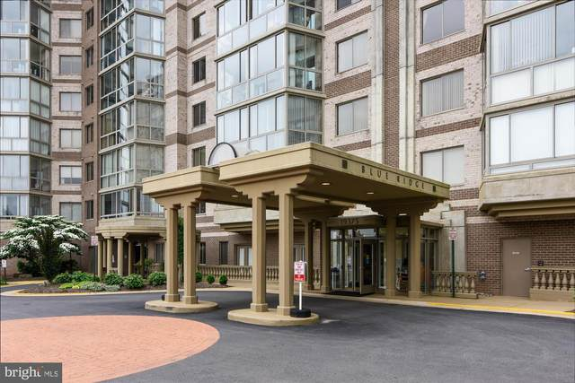 19375 Cypress Ridge Terrace #904, LEESBURG, VA 20176 (#VALO2004772) :: Bic DeCaro & Associates