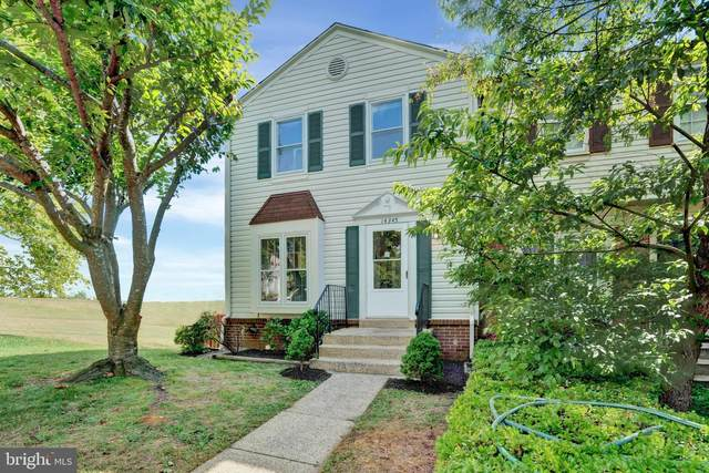 14345 Watery Mountain Court, CENTREVILLE, VA 20120 (#VAFX2011938) :: Jacobs & Co. Real Estate