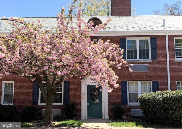 3307 Commonwealth Avenue B, ALEXANDRIA, VA 22305 (#VAAX2002044) :: Nesbitt Realty