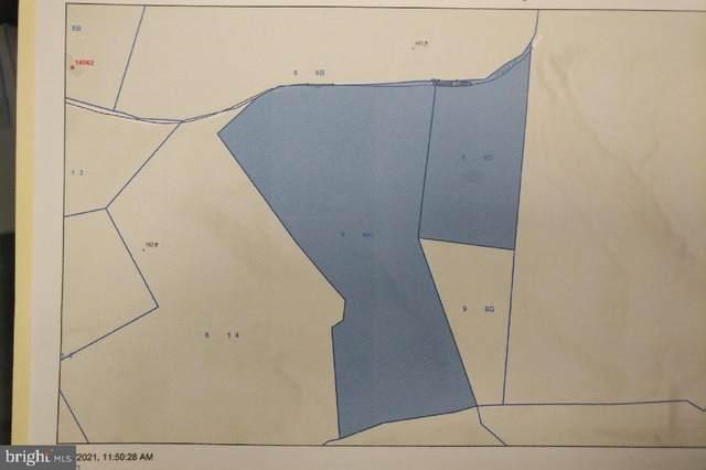 15963 Trigger Lane, KING GEORGE, VA 22485 (#VAWE2000406) :: Great Falls Great Homes