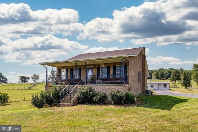 2586 Graveltown Road, QUICKSBURG, VA 22847 (#VASH2000532) :: Great Falls Great Homes