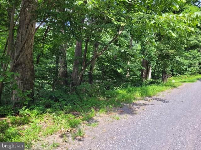 0 Parkside Road, LINDEN, VA 22642 (#VAWR2000482) :: Jennifer Mack Properties