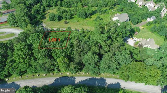 1 Overlook Ridge Dr, OAKLAND, MD 21550 (#MDGA2000554) :: Boyle & Kahoe Real Estate
