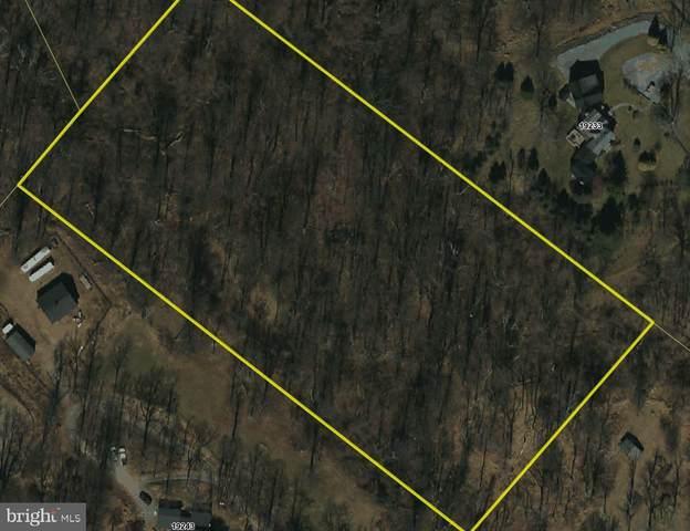 19237 Blueridge Mountain Road, BLUEMONT, VA 20135 (#VACL2000160) :: Peter Knapp Realty Group