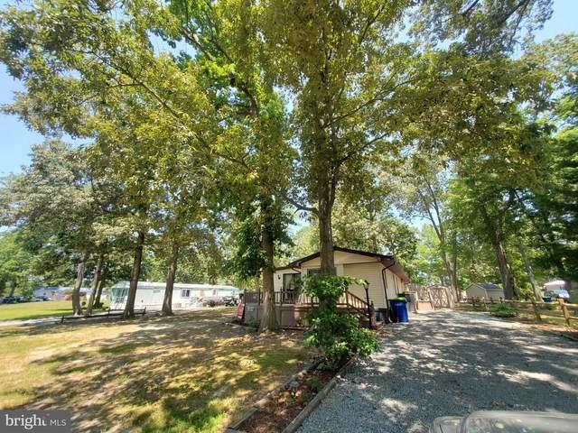 34411 Holly Pine Drive #22225, MILLSBORO, DE 19966 (#DESU2003338) :: Team Martinez Delaware