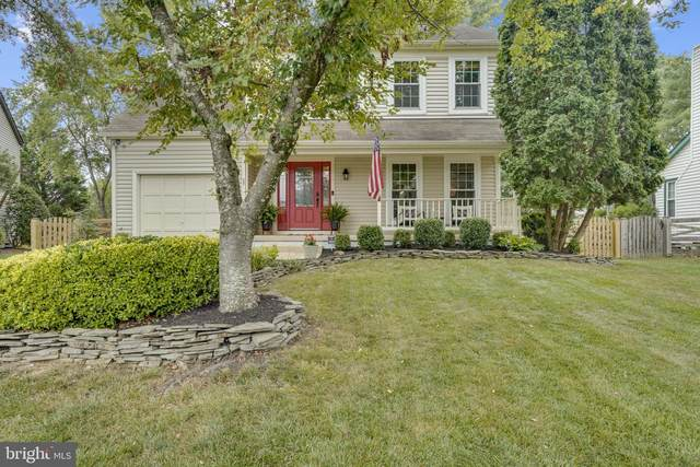34 Newland Court, STERLING, VA 20165 (#VALO2004960) :: Great Falls Great Homes