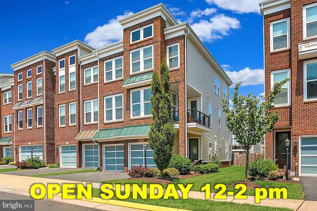 42272 Knotty Oak Terrace, BRAMBLETON, VA 20148 (#VALO2004984) :: Debbie Dogrul Associates - Long and Foster Real Estate