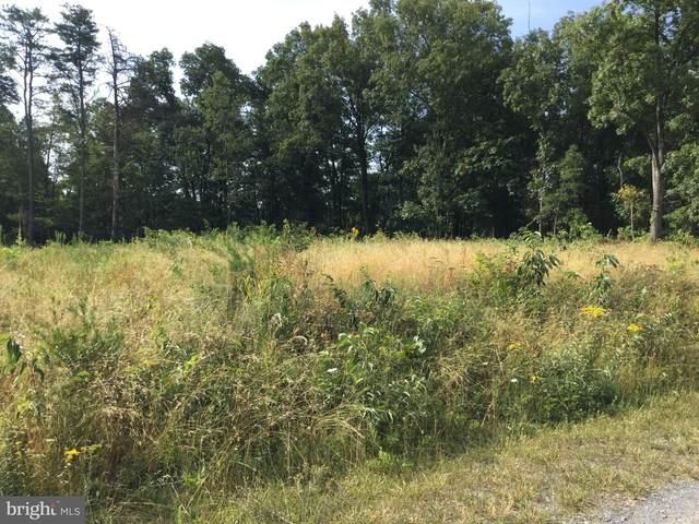 Meadow Way, WINCHESTER, VA 22602 (#VAFV2000994) :: CENTURY 21 Core Partners