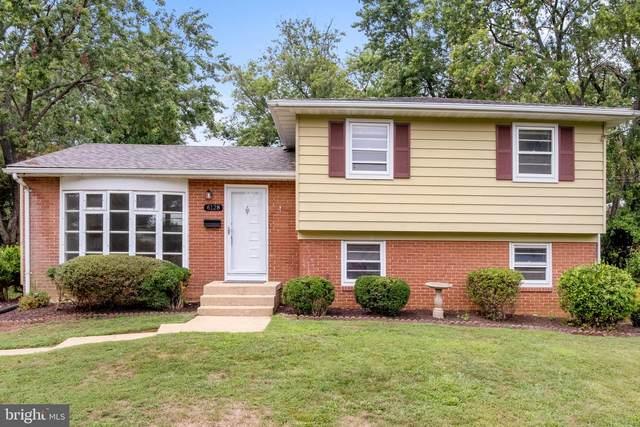 6128 Squire Lane, ALEXANDRIA, VA 22310 (#VAFX2012598) :: Debbie Dogrul Associates - Long and Foster Real Estate