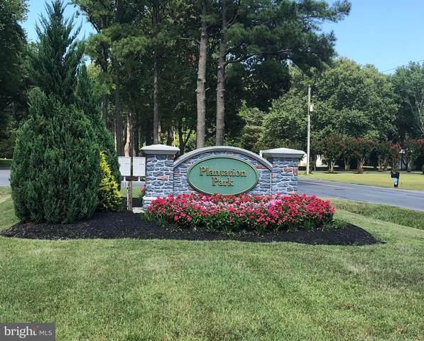 Mississippi, FRANKFORD, DE 19945 (#DESU2003420) :: Shamrock Realty Group, Inc