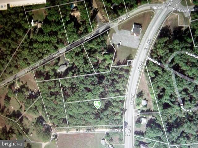 Pegg Road, LEXINGTON PARK, MD 20653 (#MDSM2001142) :: Team Caropreso