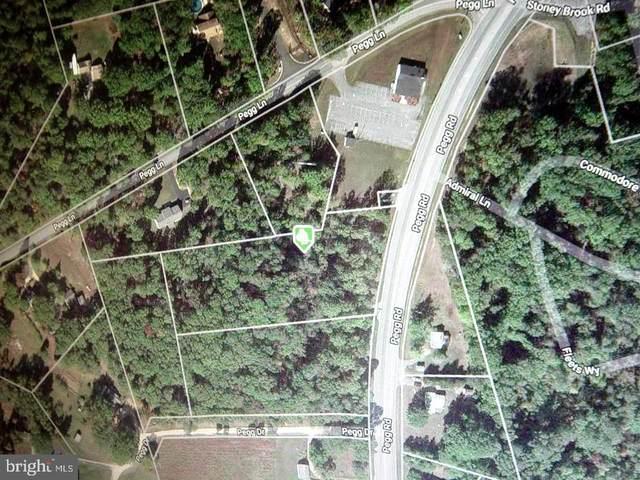 Pegg Road, LEXINGTON PARK, MD 20653 (#MDSM2001144) :: Dart Homes
