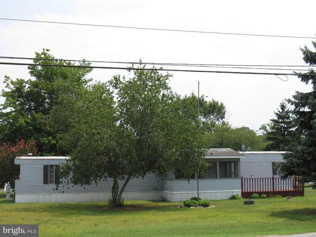 35 Ritter Drive, MILLSBORO, DE 19966 (#DESU2003482) :: Ramus Realty Group